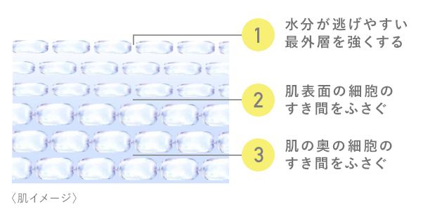 ディフェンセラの3段階バリア2