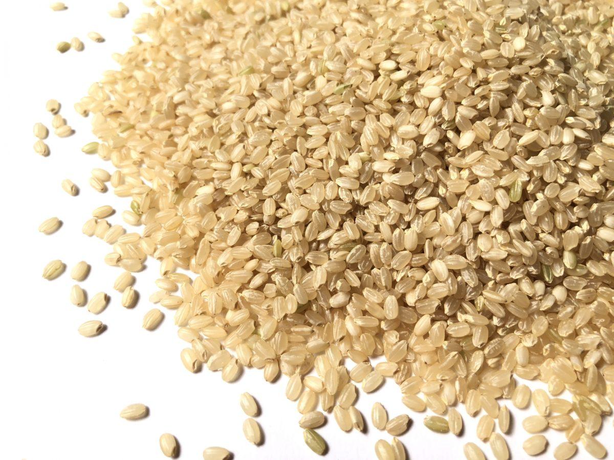 玄米由来の独自成分ライスミルクコンプレックス