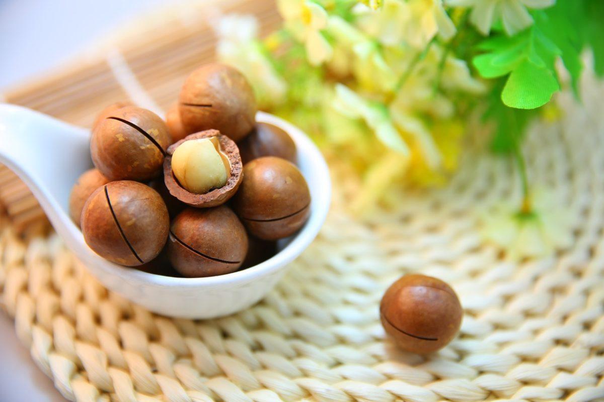 オラクル化粧品の成分は自社農園の植物エッセンス配合マカデミアナッツオイル